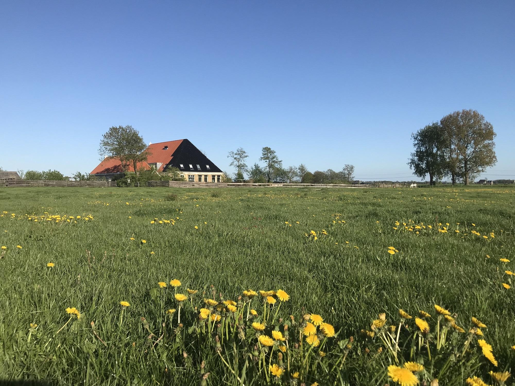 boerderij uitzicht 2